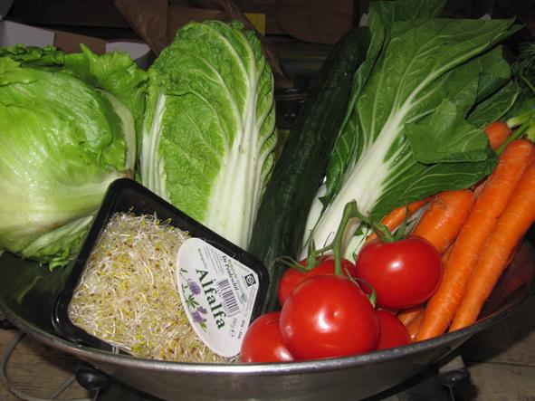biologisch groenten pakket